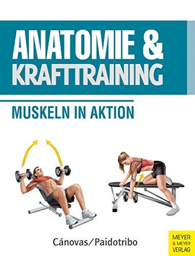 Anatomie & Krafttraining: Muskeln in Aktion