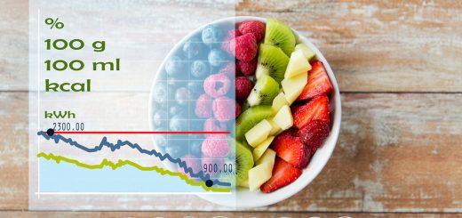 Kalorienbedarf,Grundumsatz,Leistungsumsatz,Gesamtumsatz